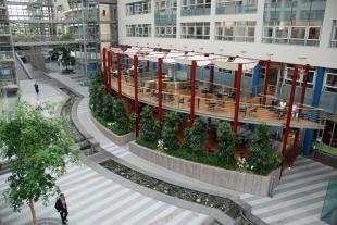 Innenraumbegrünung Cafeteria